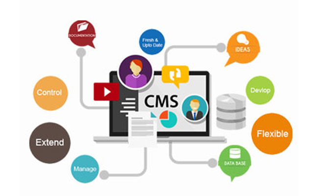 Content Management Systems(CMS) - Chaster IT Solutions Pvt. Ltd.